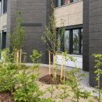 MR Datentechnik moderne Außenanlagen mit Obstbäumen