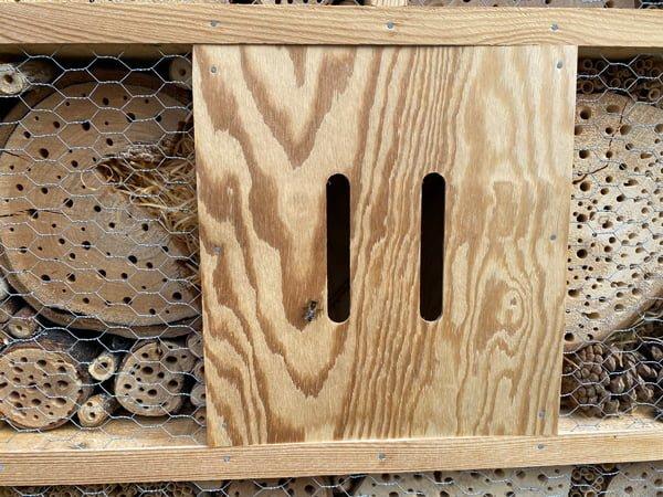 Bienenhotel mit Biene