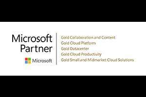 Logo Microsoft Partner 2021